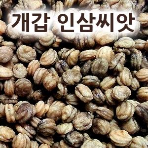 [개갑된] 인삼.산삼.장뇌삼 씨앗 (1kg)